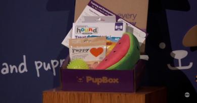 Pupbox update shark tank